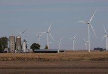 Wind turbines are seen behind a corn field in Rippey, Iowa.