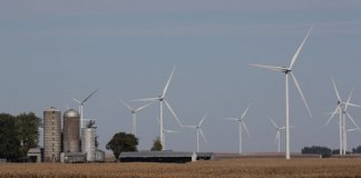 Wind turbines are seen behind a corn field in Rippey, Iowa.