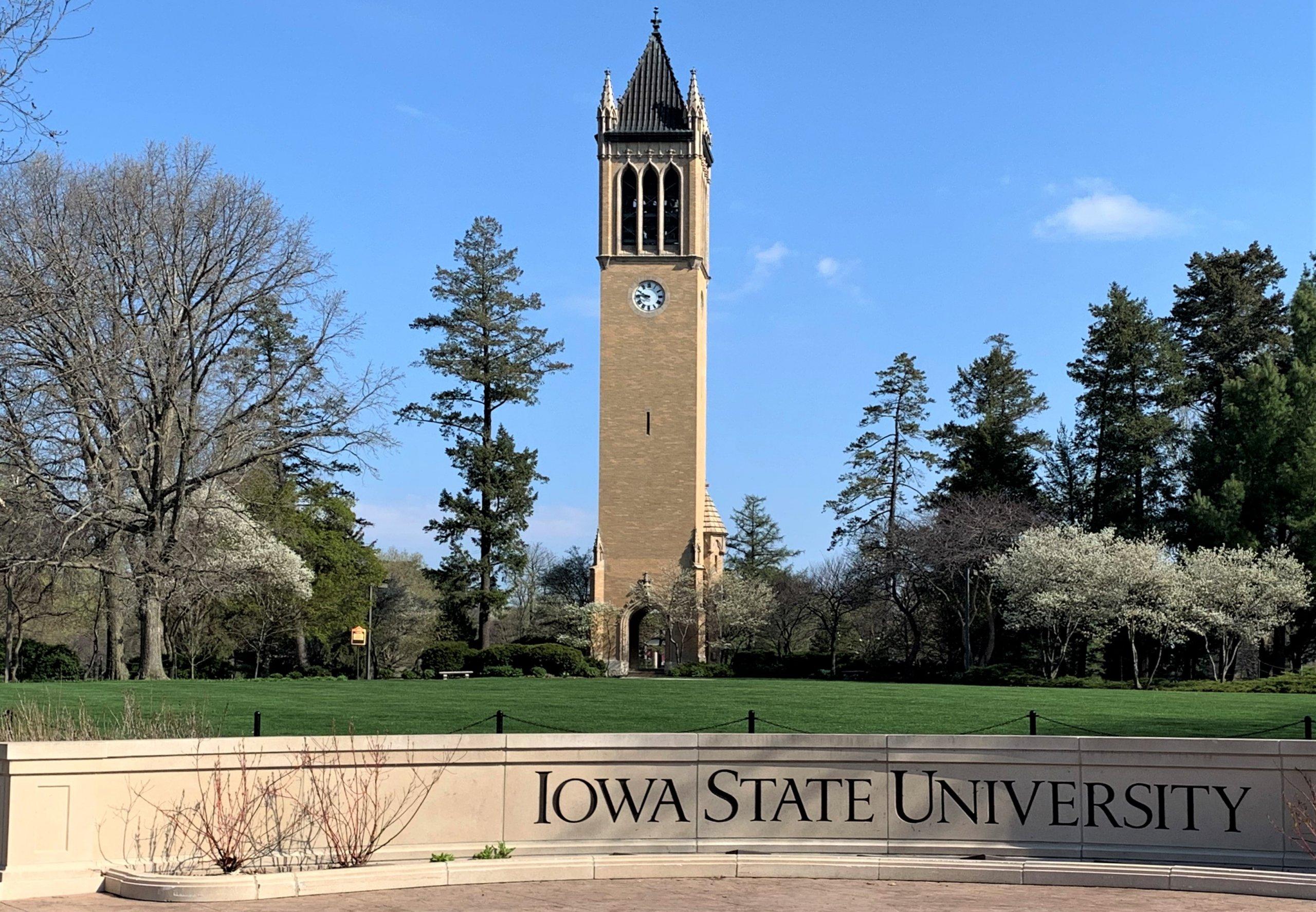 Iowa Decal Iowa Floral Iowa hawkeye Iowa Sticker Iowa watercolor University of Iowa iowa painting State of Iowa