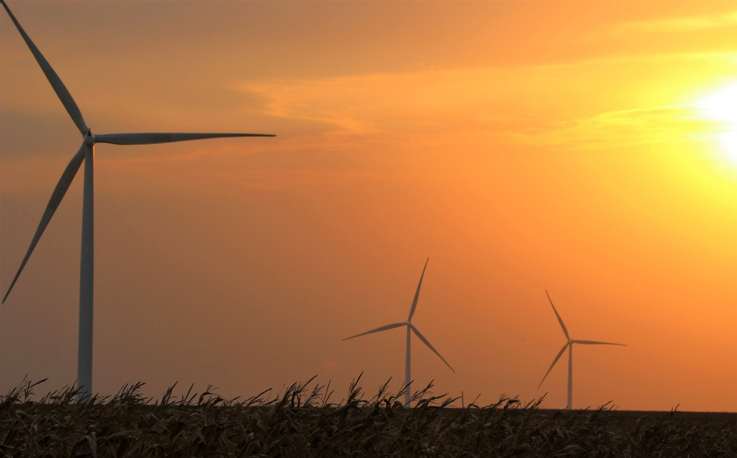 Iowa is one of the nation's top producers of wind energy. (Photo by Perry Beeman/Iowa Capital Dispatch)