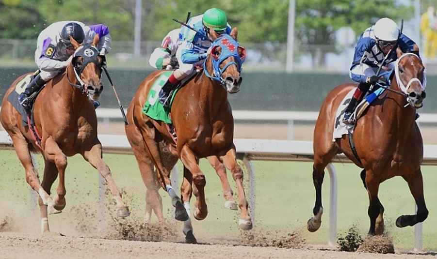 Did someone urinating in a horse's stall lead to an Iowa Derby disqualification?