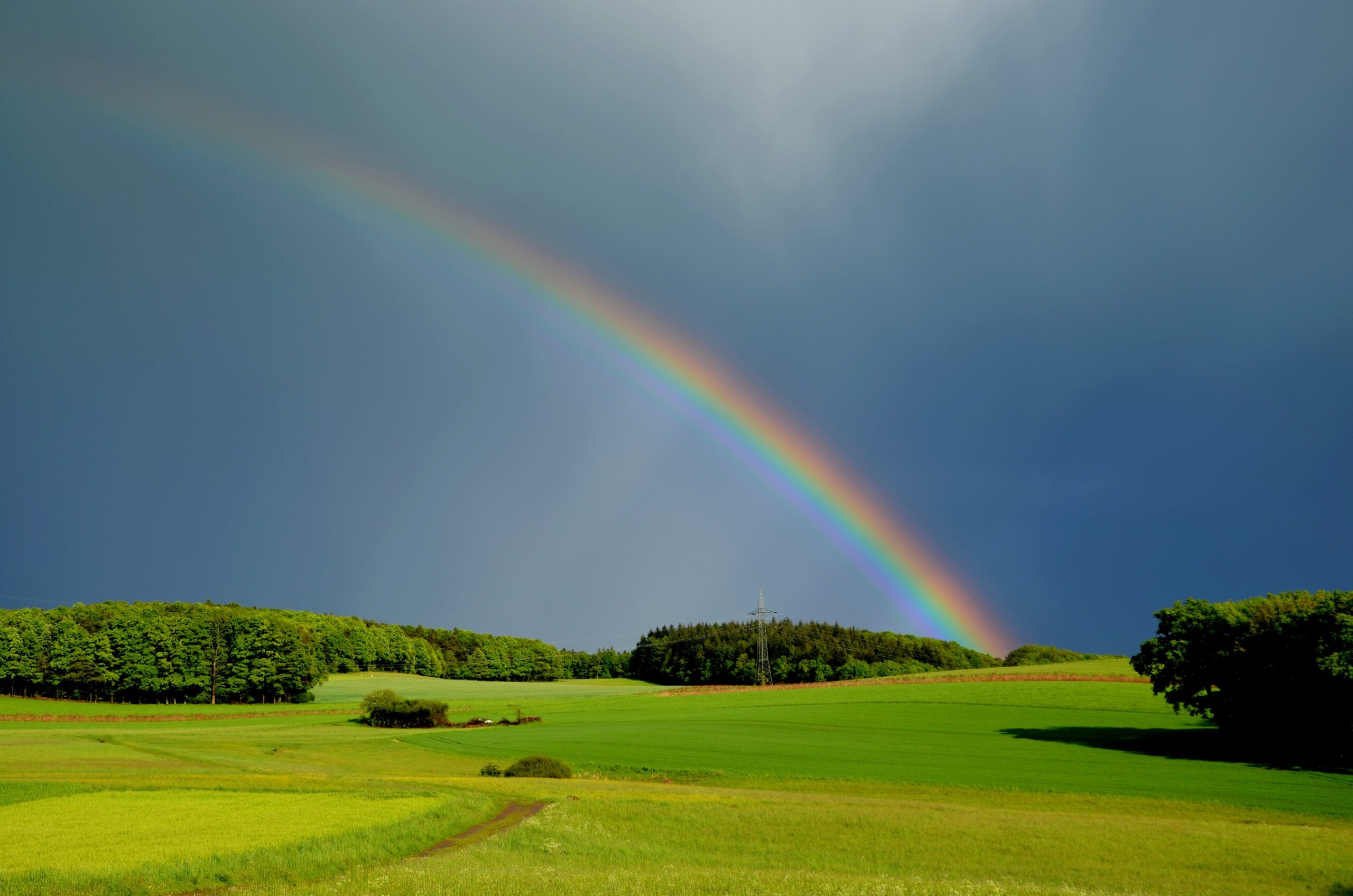 Basic truths: Can you cite the rainbow of veracity?