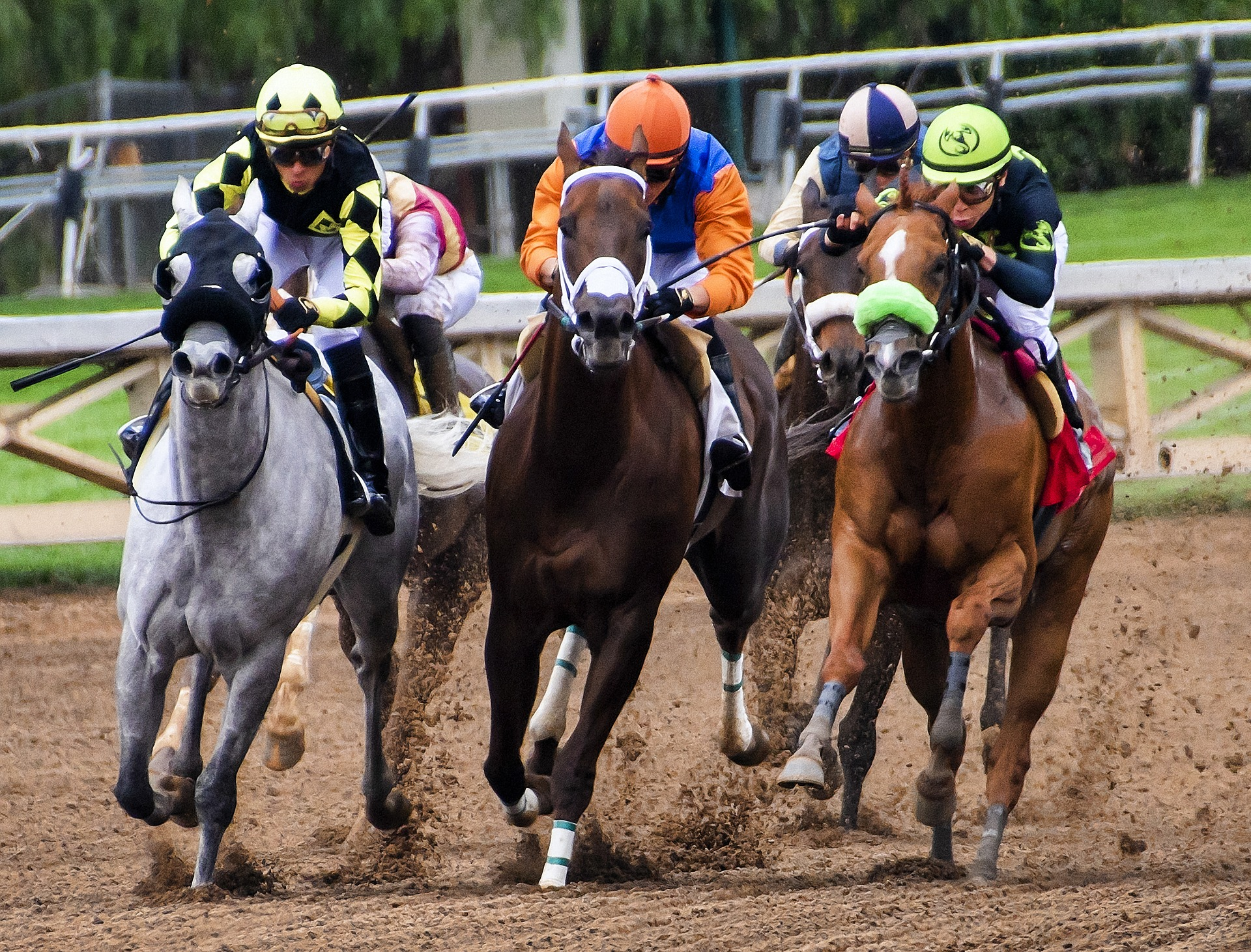 Law glitch: Iowa horse track illegally took bets on foreign simulcasts for decades